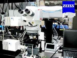Microscópio Confocal Upright Zeiss LSM780-NLO